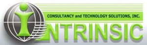 Intrinsic Consultancy and Technology Solutions, Inc.